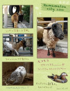 レポート:浜松市動物園.png